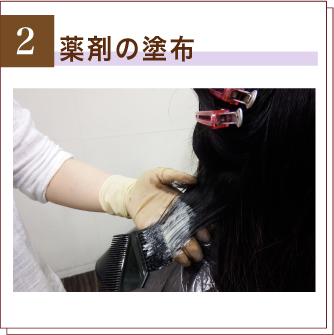 手順2 コラーゲン100%のオーガニックストレートの薬剤を塗布します。 ></p> <p class=