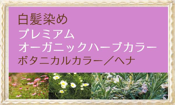 自然派植物系カラー